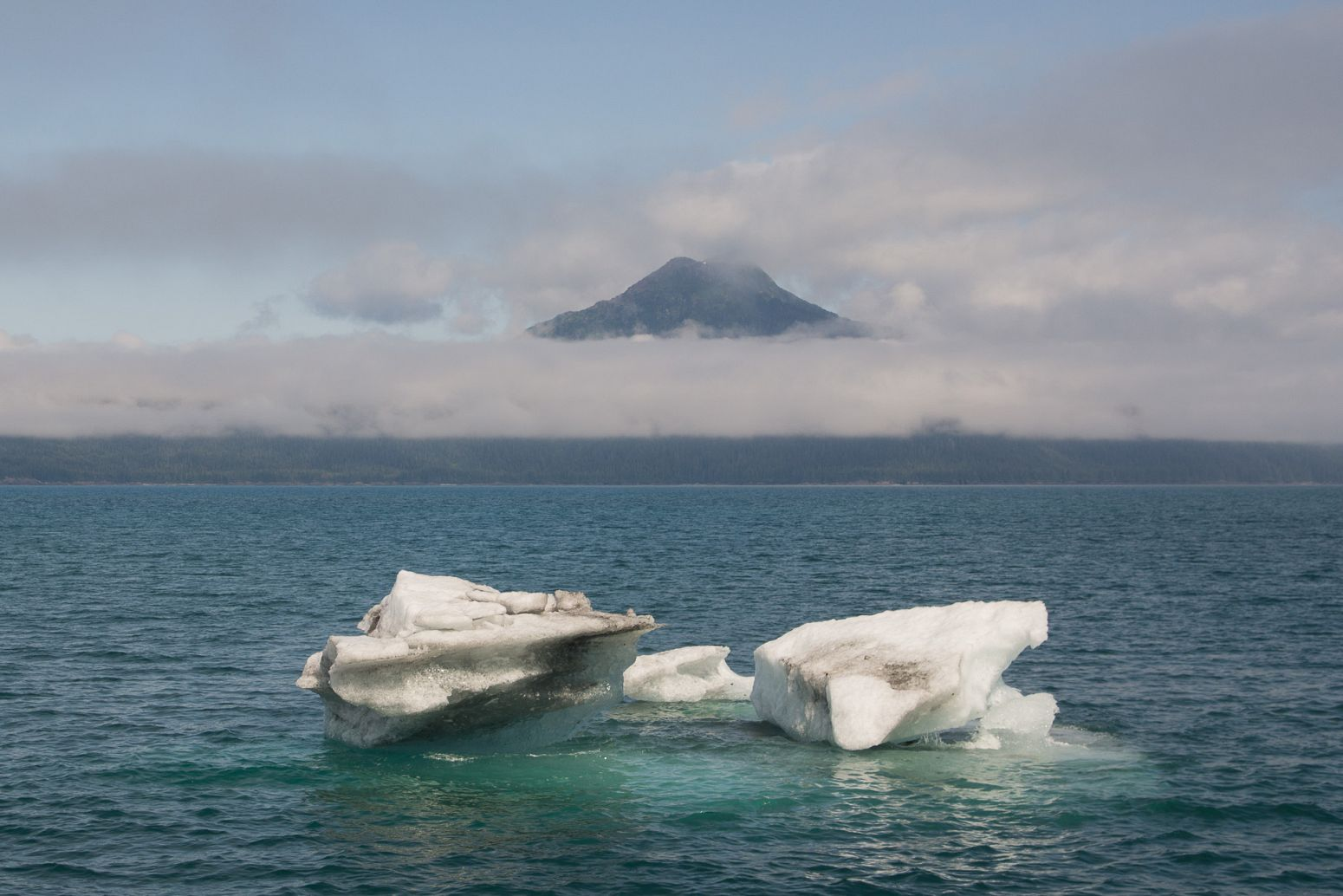 Icebergs floating in Prince William Sound, Alaska, USA