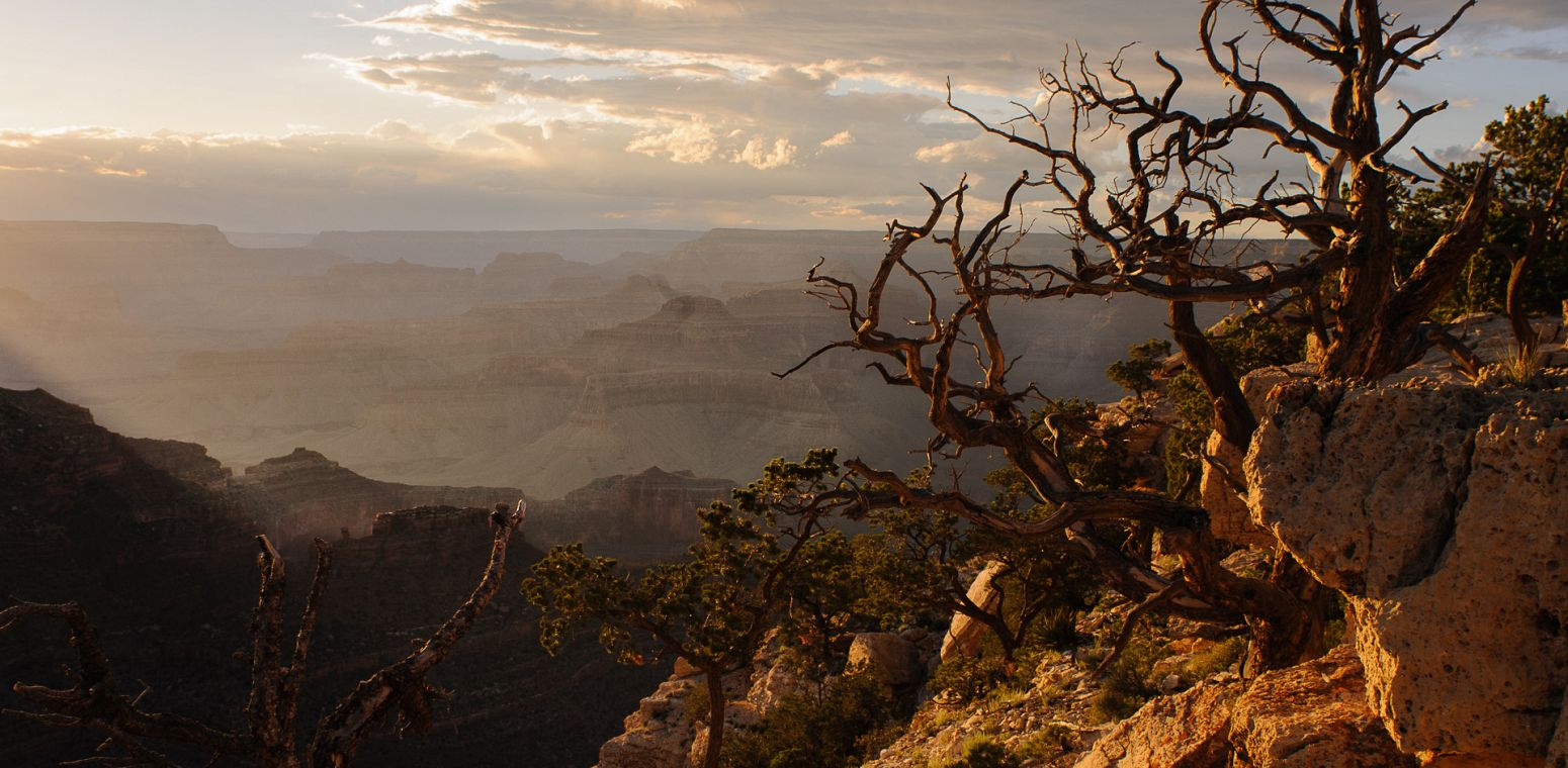 Grand Canyon from the Rim Trail, Arizona, USA