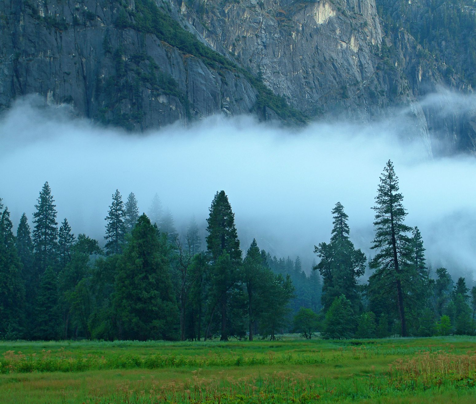 Low clouds after some heavy rain, Yosemite NP, California, USA