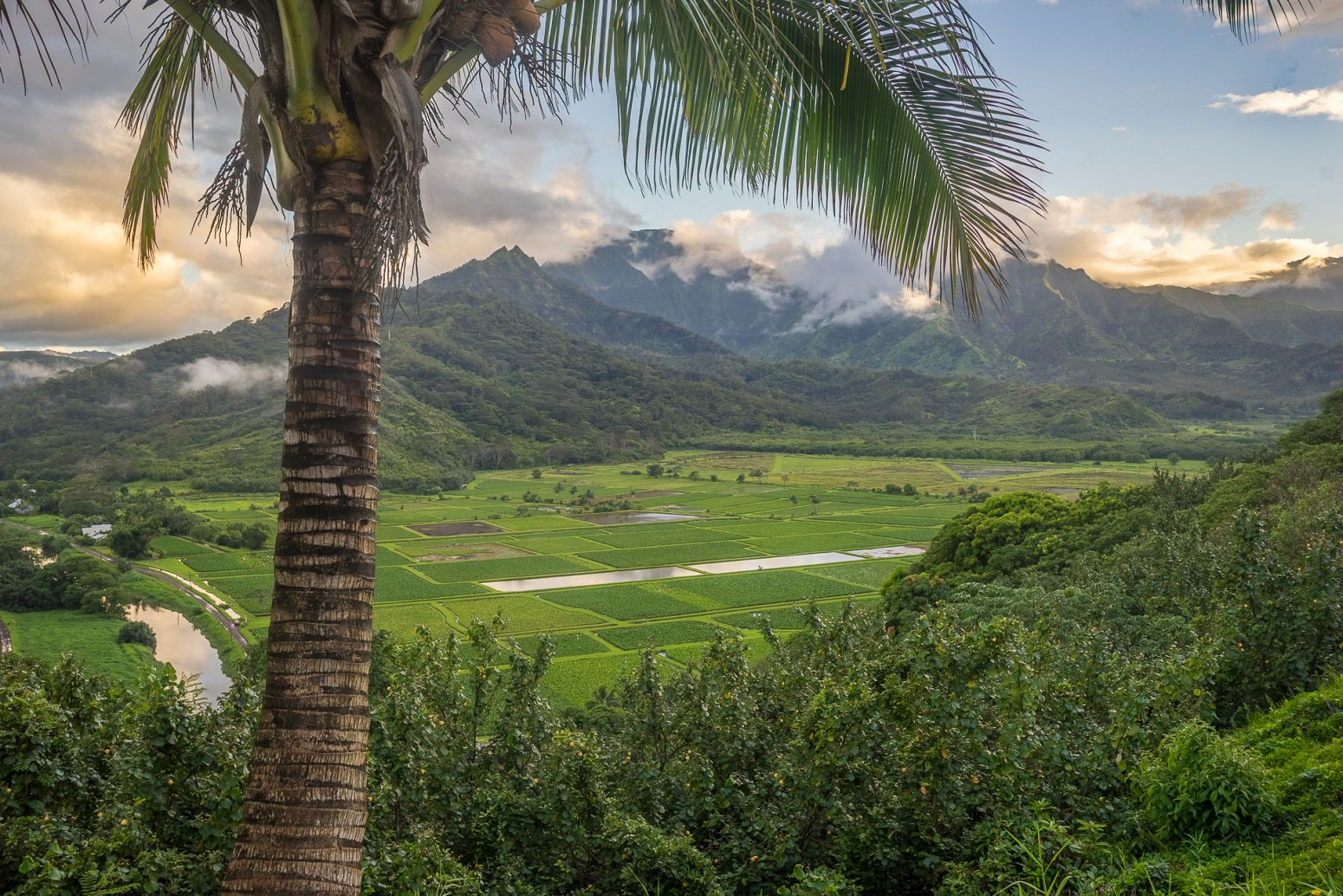 Hanalei Valley, Hawaii, USA