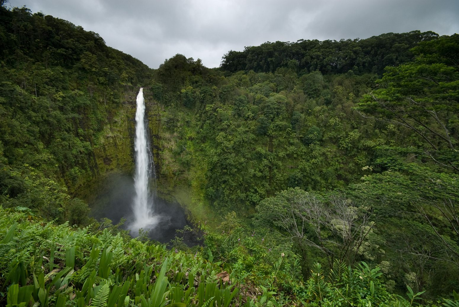 Akaka Falls, Big Island, Hawaii, USA