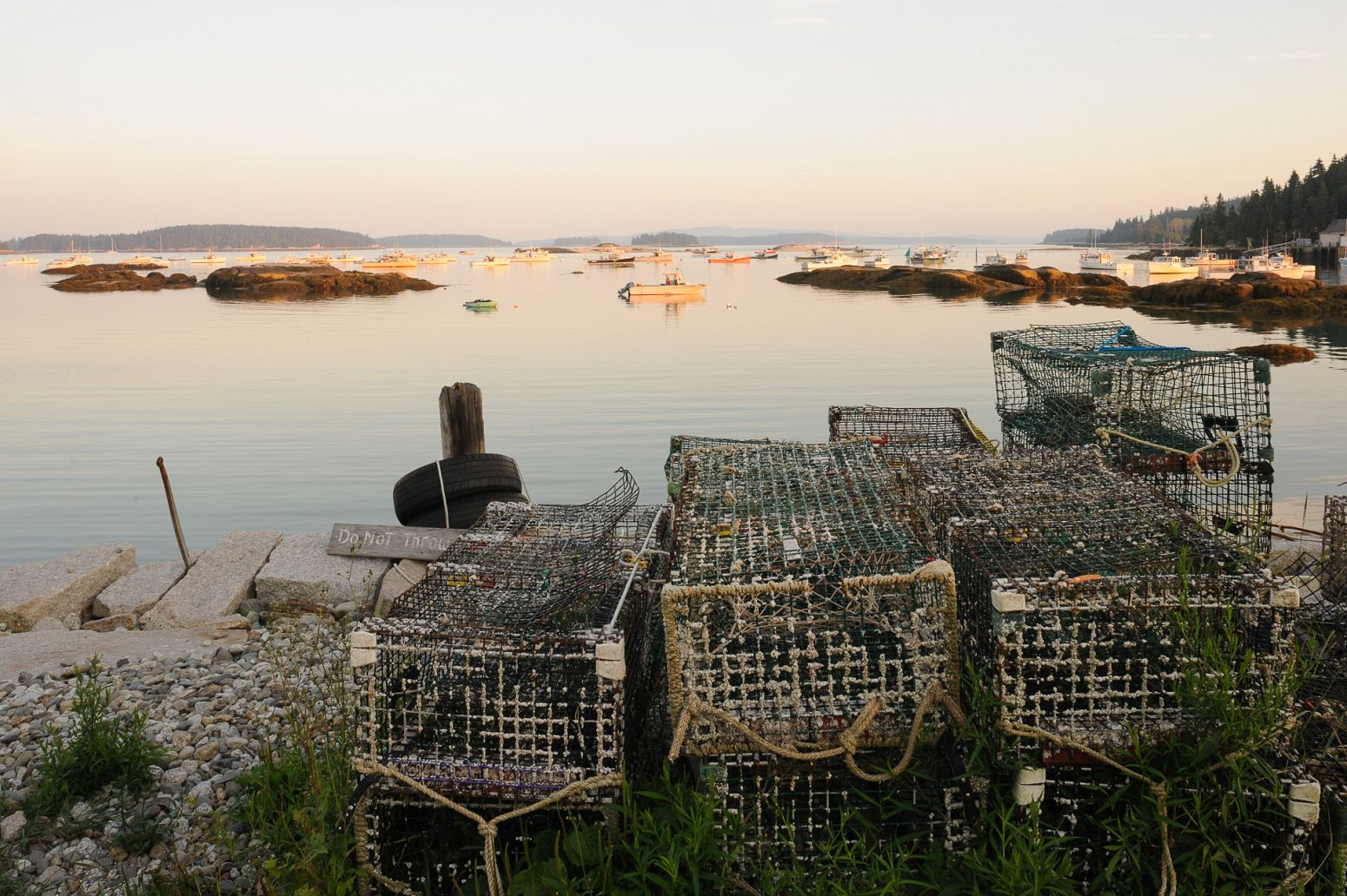 Lobster traps, Stonington, Maine, USA