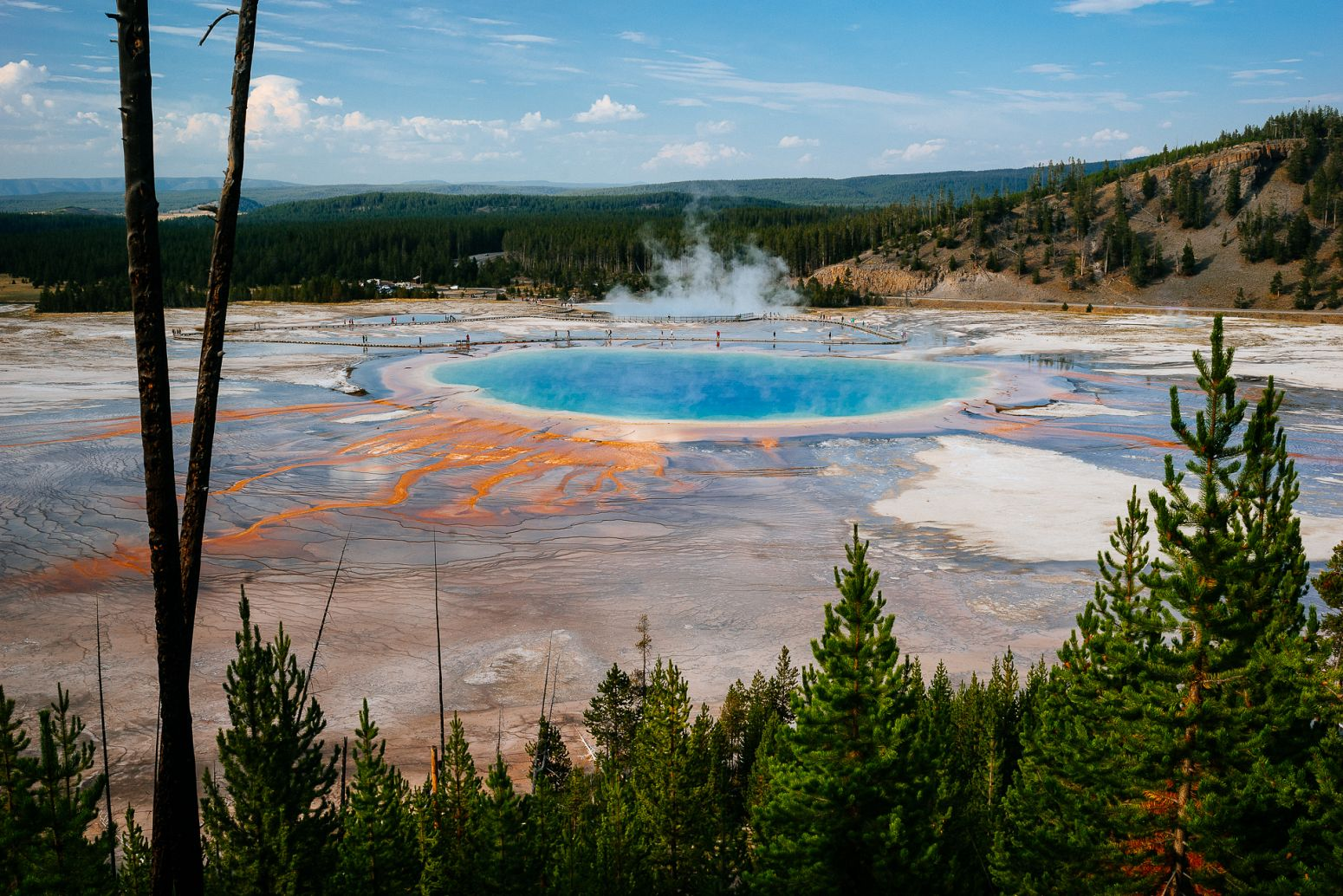 Grand Prismatic spring, Yellowstone NP, Wyoming, USA