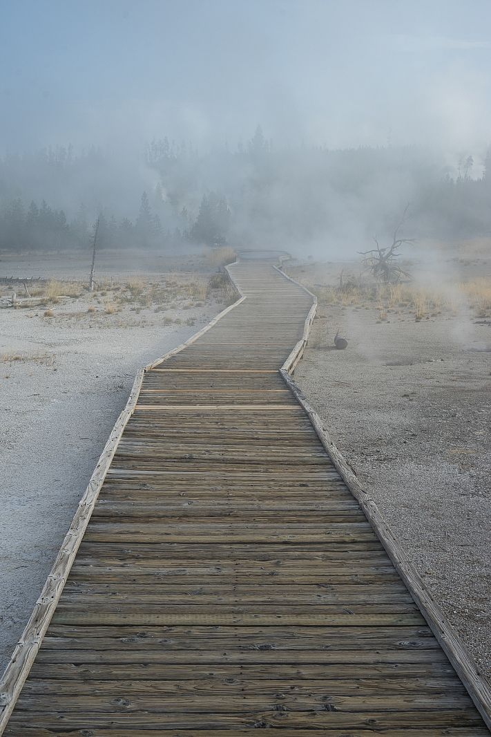 Norris Geyser Basin, Yellowstone NP, Wyoming, USA