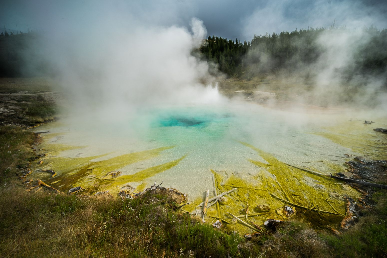 Imperial Geyser, Yellowstone NP, Wyoming, USA