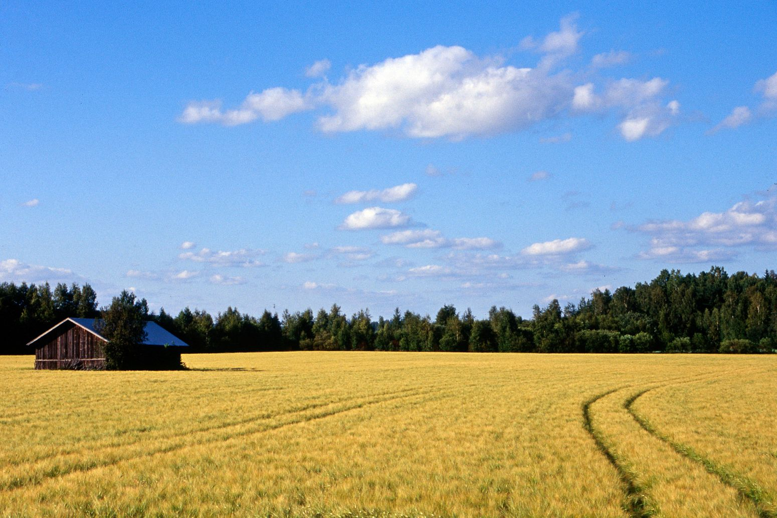 Field and barn, Finland