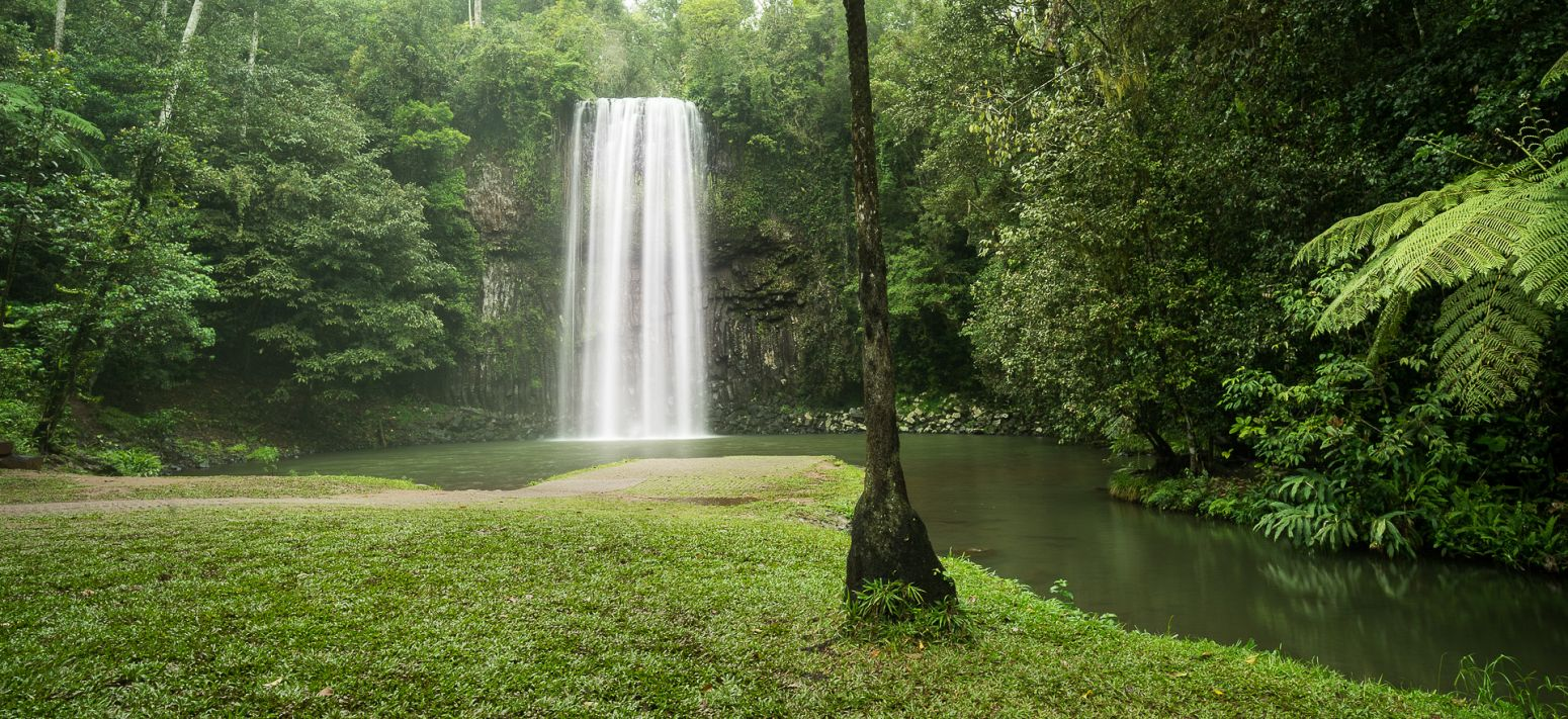Millaa Millaa falls - part of the Waterfall Circuit, Queensland, Australia