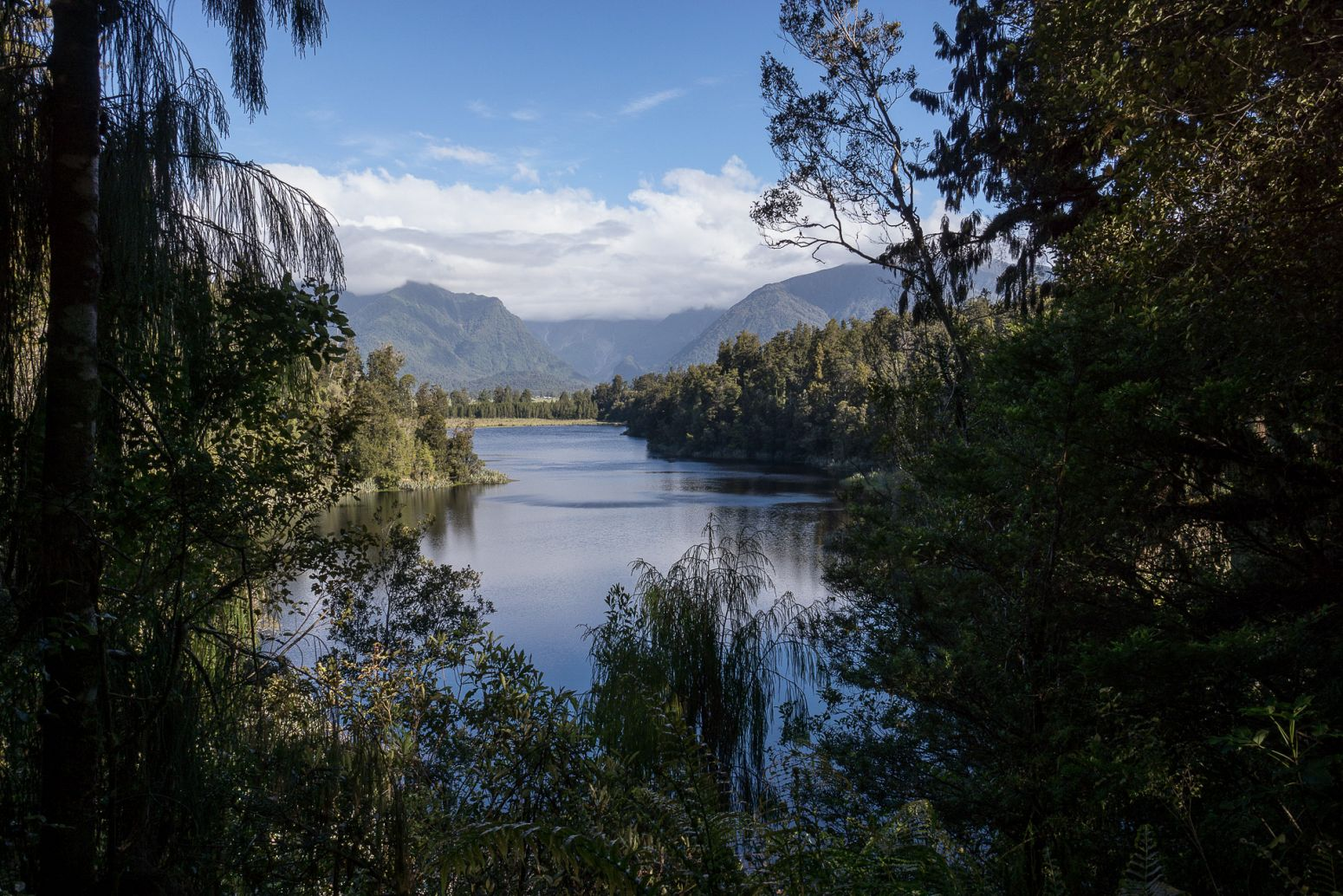 Lake Matheson, Westland NP, New Zealand